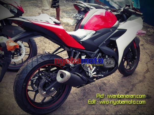 YZF R25 : pict from iwanbanaran.com