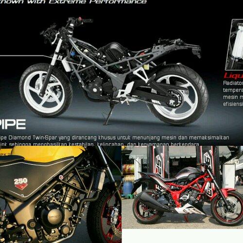 Tralis Honda CBR250R