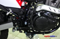 Honda CRF150L_21